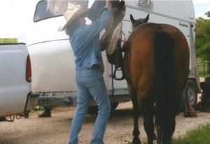 horse0001