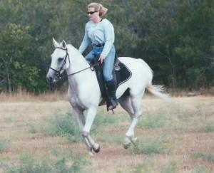 horse0148